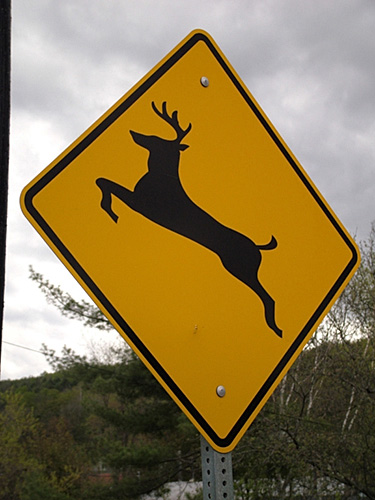 iy7161 road sign caution deer crossing sign warning signs